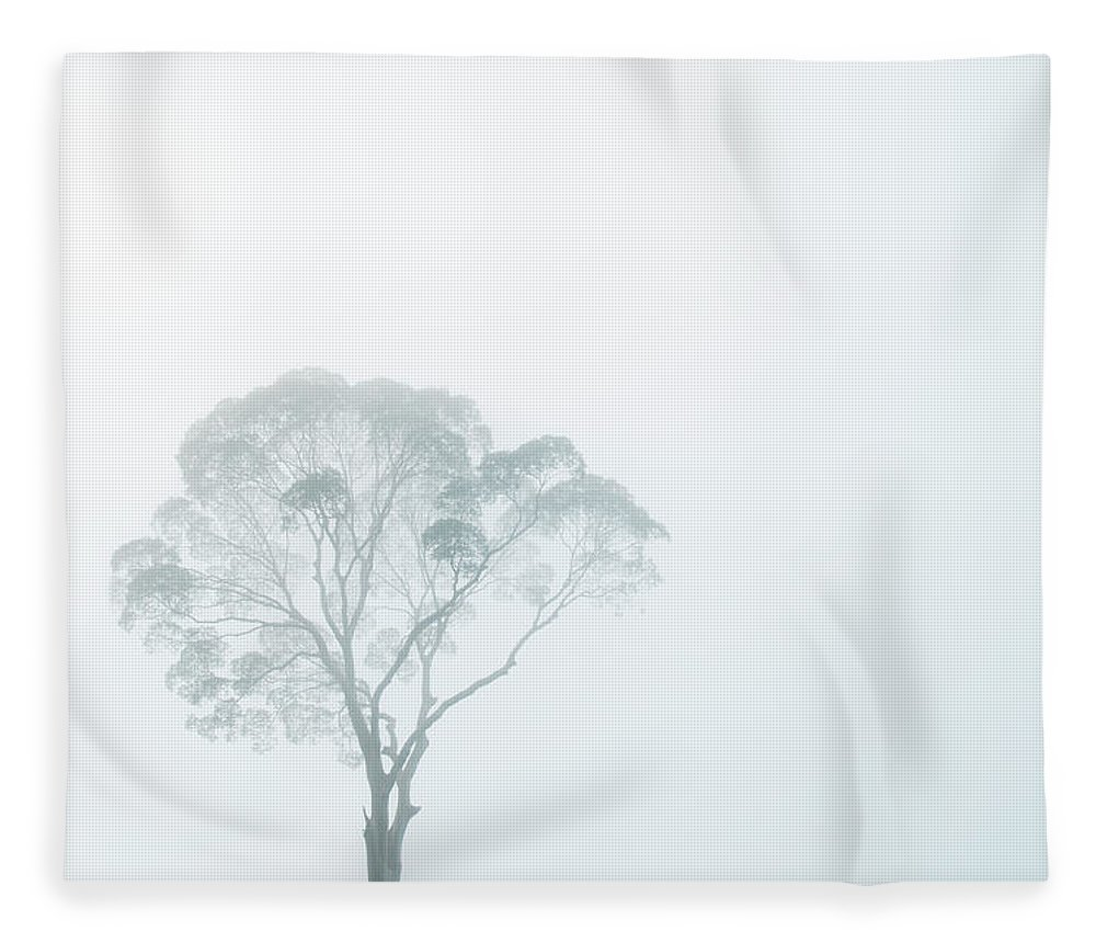 Crown Fleece Blanket featuring the photograph Crown Of Tall Dipterocarp Tree In by Anders Blomqvist