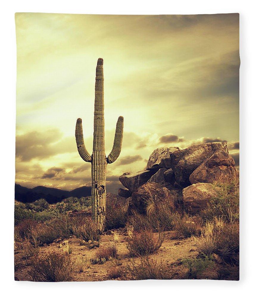 Saguaro Cactus Fleece Blanket featuring the photograph Desert Cactus - Classic Southwest by Hillaryfox