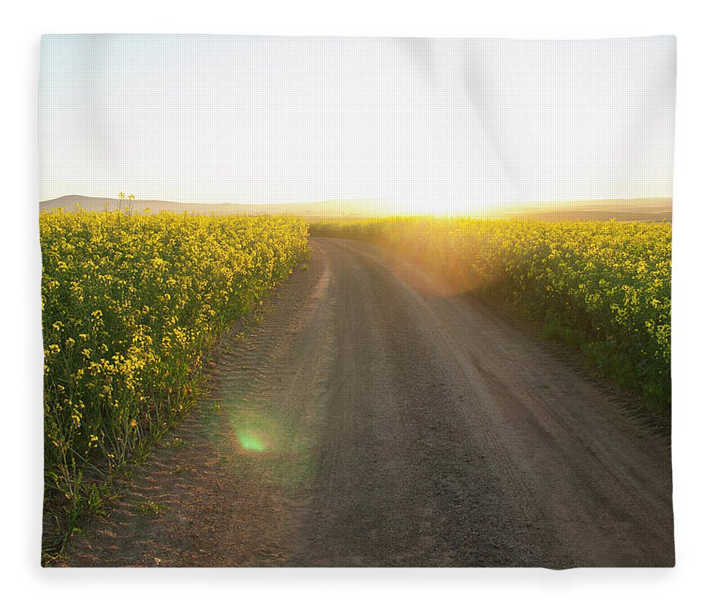 Tranquility Fleece Blanket featuring the photograph Dirt Road In Field Of Flowers by Luka