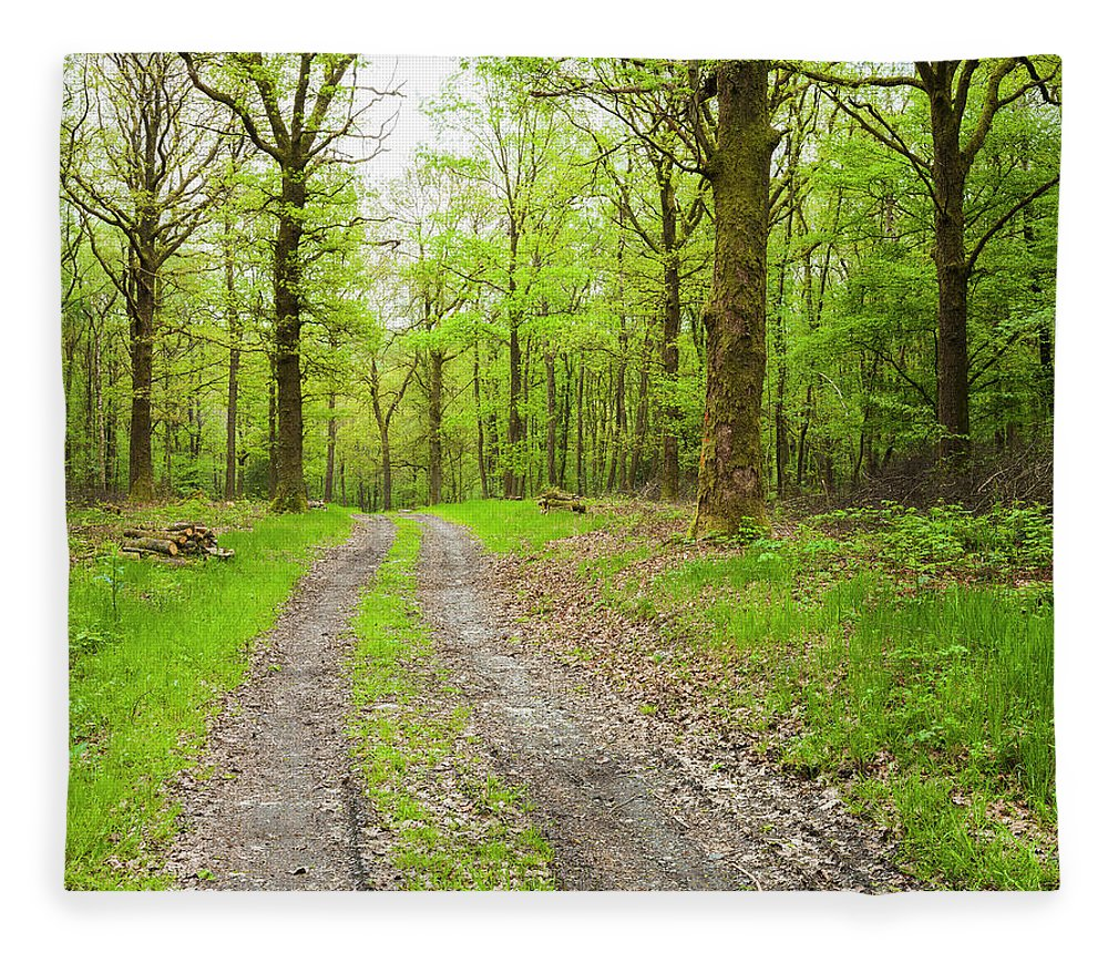 Scenics Fleece Blanket featuring the photograph Dirt Road Surrounded By Trees In by Mike Kemp Images