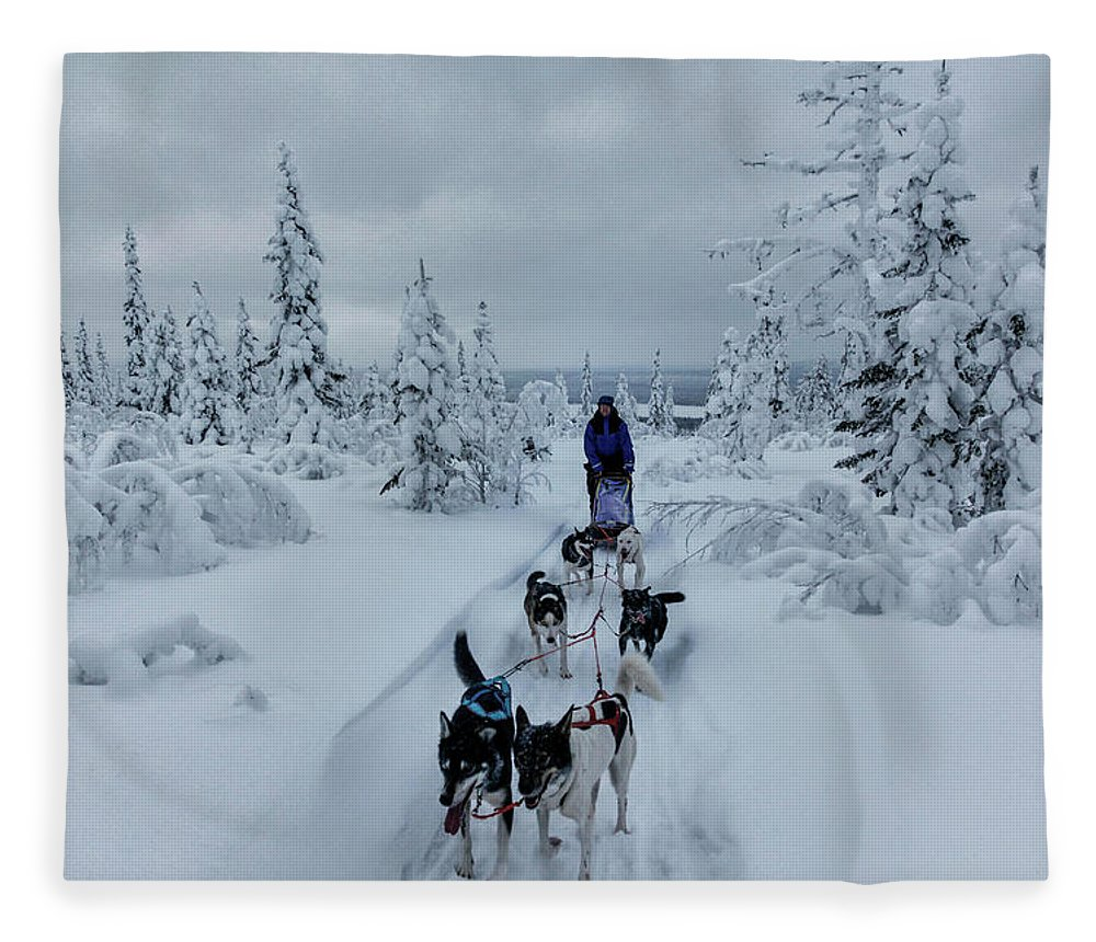 Working Animals Fleece Blanket featuring the photograph Dogsledding Through The Forest by Johnathan Ampersand Esper