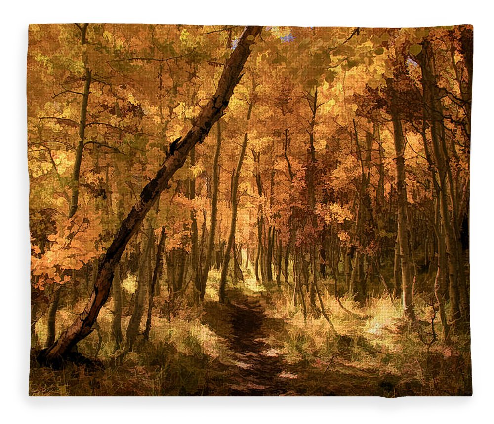 June Lake Fleece Blanket featuring the photograph Down The Golden Path by Donna Kennedy