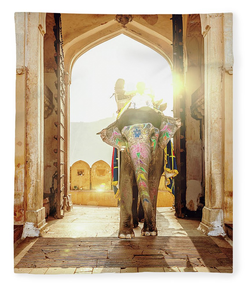 Working Animal Fleece Blanket featuring the photograph Elephant At Amber Palace Jaipur,india by Mlenny
