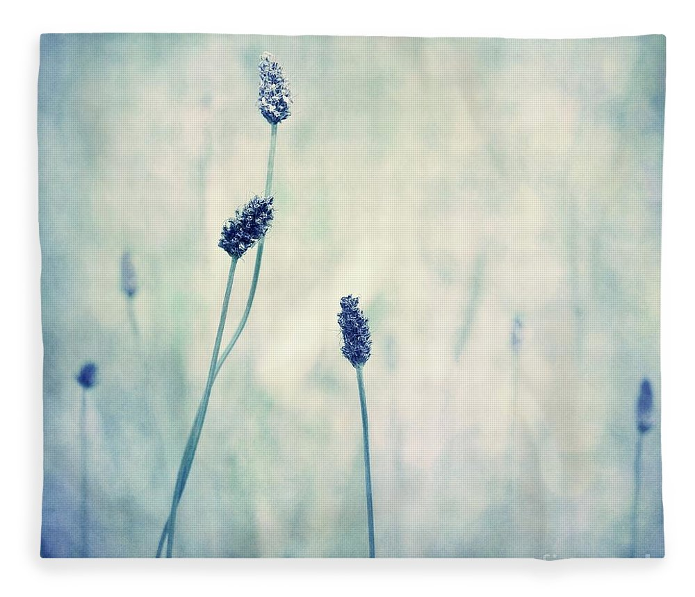 Blue Fleece Blanket featuring the photograph Endearing by Priska Wettstein