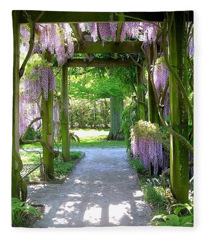 Purple Wisteria Fleece Blanket featuring the photograph Entranceway To Fantasyland by Susan Maxwell Schmidt