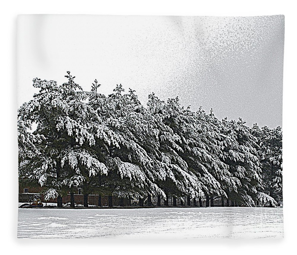 Illinois Fleece Blanket featuring the photograph Evergreens In Snow by Luther Fine Art