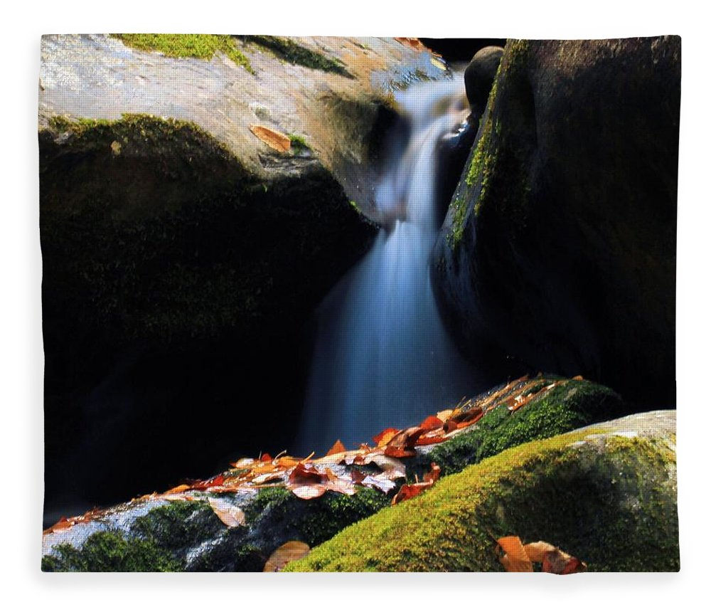 Fall Flow Fleece Blanket featuring the photograph Fall Flow by Dan Sproul