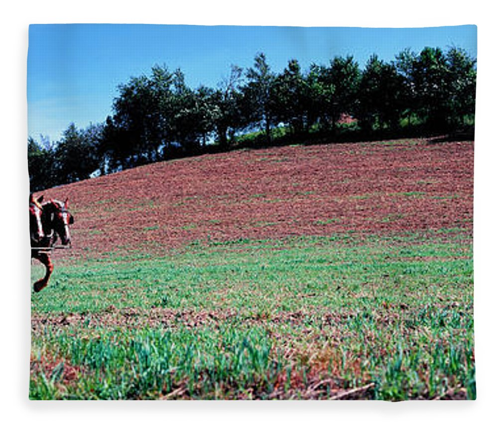 Photography Fleece Blanket featuring the photograph Farmer Plowing Field With Horses, Amish by Panoramic Images