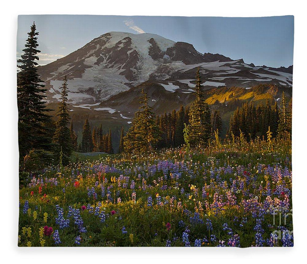 Rainier Fleece Blanket featuring the photograph Field Of Dreams by Mike Reid