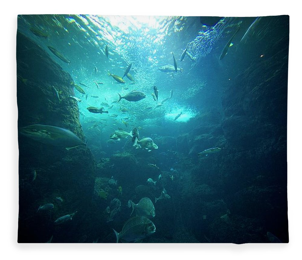 Underwater Fleece Blanket featuring the photograph Fishes by By Tddch
