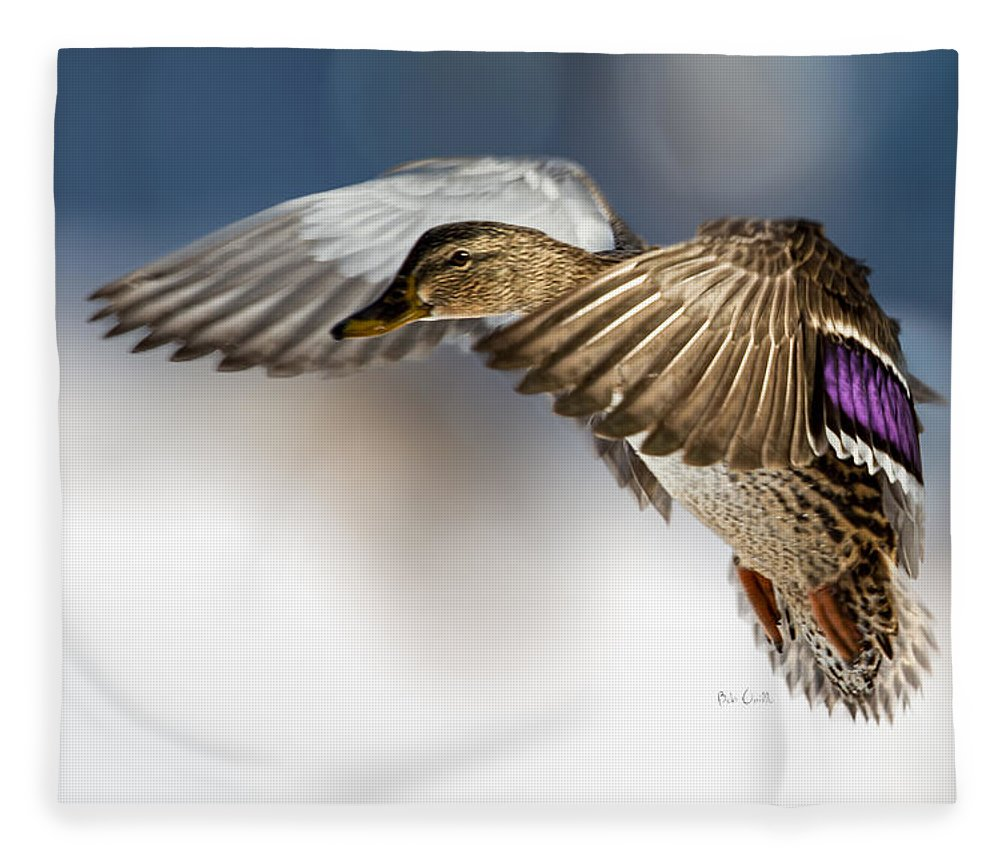 Duck Fleece Blanket featuring the photograph Flight Of The Mallard by Bob Orsillo