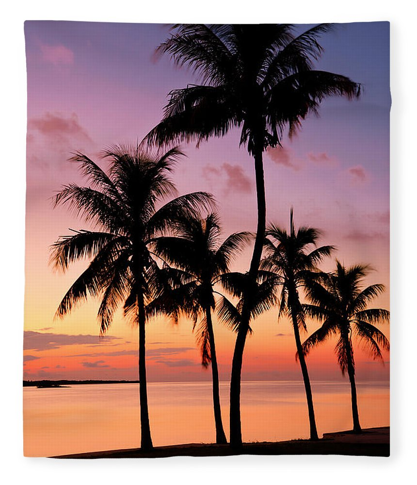 Sunset Fleece Blanket featuring the photograph Florida Breeze by Chad Dutson
