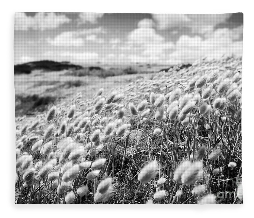 Flower Field Black And White Fleece Blanket For Sale By Tim Hester