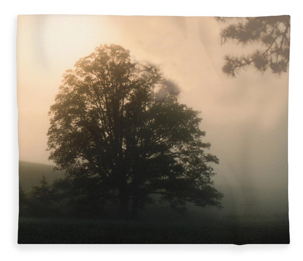 Sunrise Fleece Blanket featuring the photograph Foggy Morning by Norman Johnson