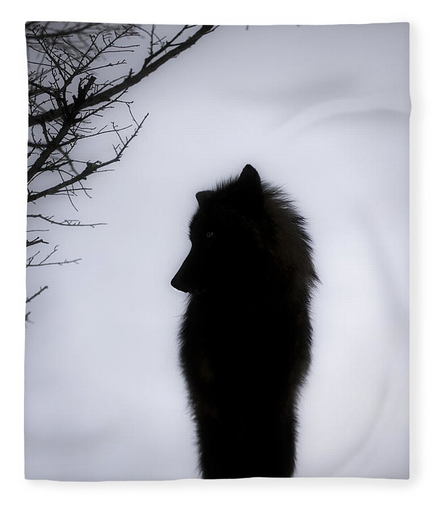 Wolf Fleece Blanket featuring the photograph Wolf Folklore by Wildlife Fine Art