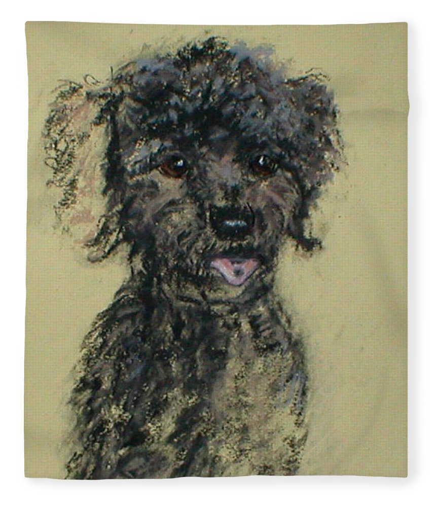 Toy Poodle Fleece Blanket featuring the drawing Fred by Cori Solomon