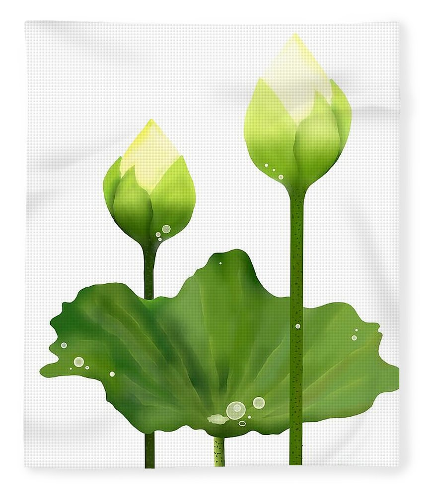 Fresh White Lotus Flowers And Leaf On White Background Fleece