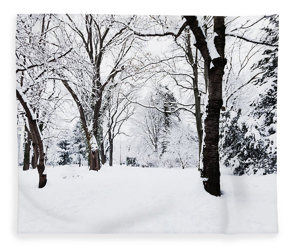 Snow Fleece Blanket featuring the photograph Frozen Tree On A Snow Field by Lightkey