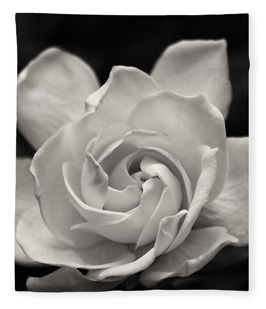Gardenia Fleece Blanket featuring the photograph Gardenia Bloom In Sepia by Jill Lang