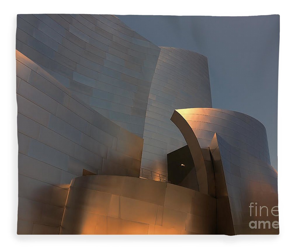 Frank Gehry Fleece Blanket featuring the photograph Gehry Tones Architecture Los Angeles California by Chuck Kuhn