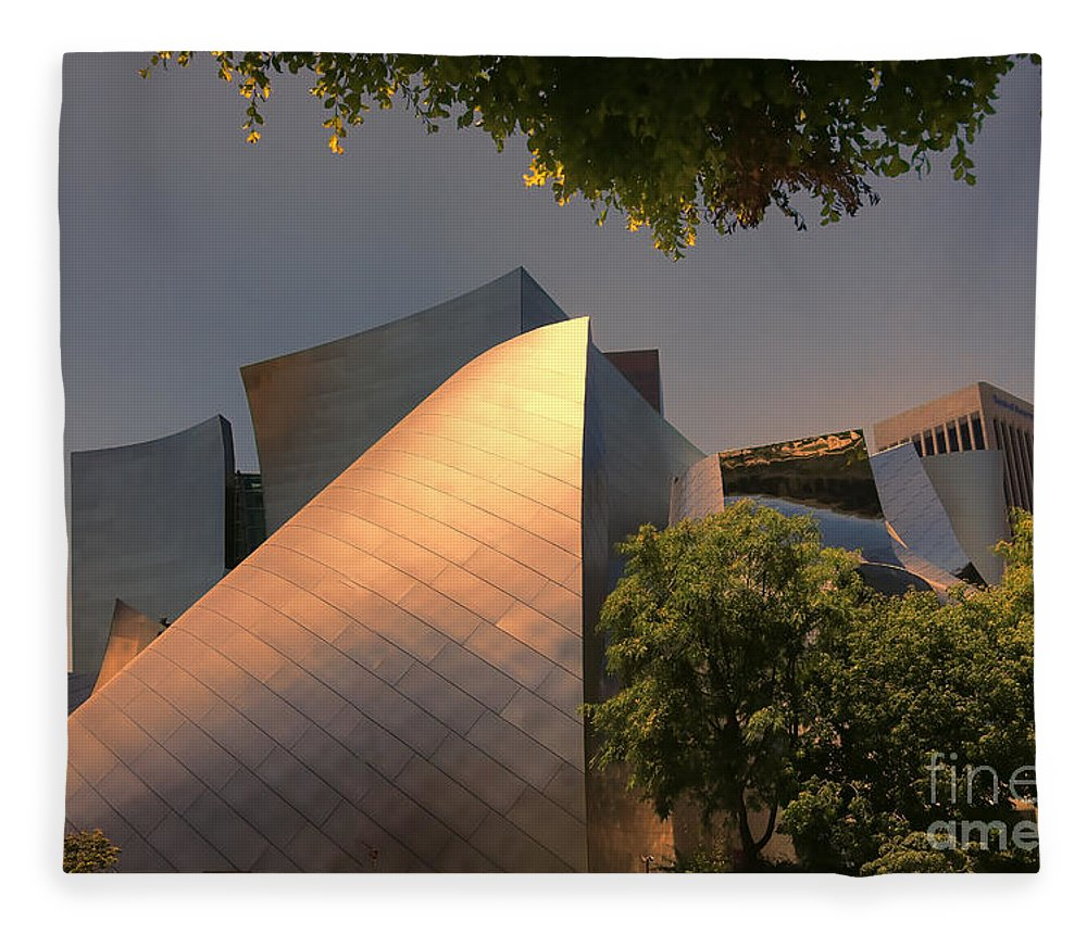 Frank Gehry Fleece Blanket featuring the photograph Gehry Vii by Chuck Kuhn
