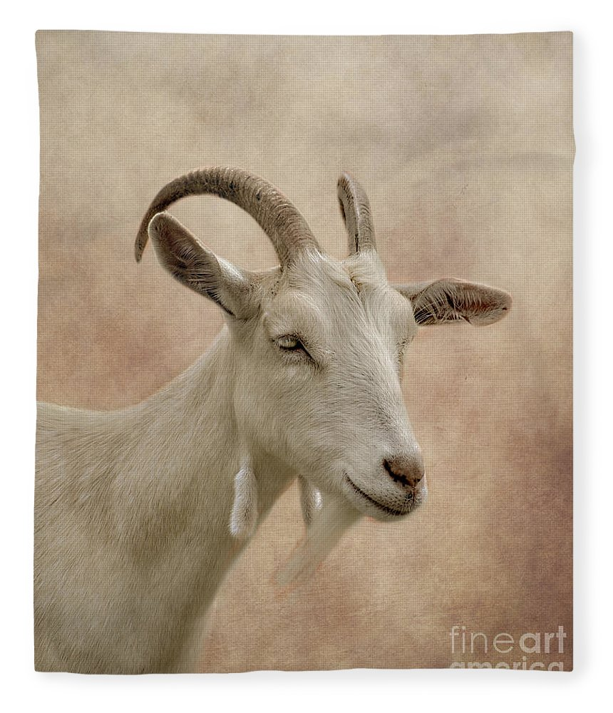 Goat Fleece Blanket featuring the photograph Goat by Linsey Williams