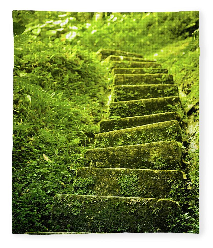 Tropical Rainforest Fleece Blanket featuring the photograph Green Stair by Pixalot