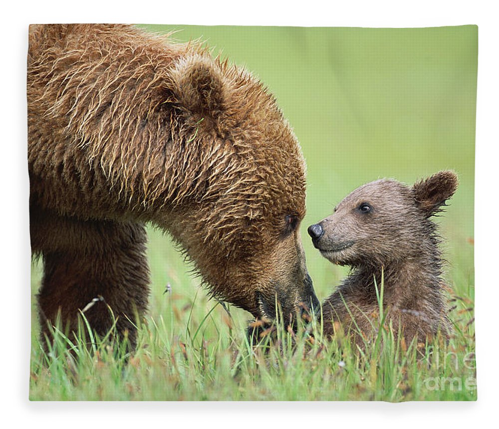 00345260 Fleece Blanket featuring the photograph Grizzly Bear And Cub in Katmai by Yva Momatiuk John Eastcott