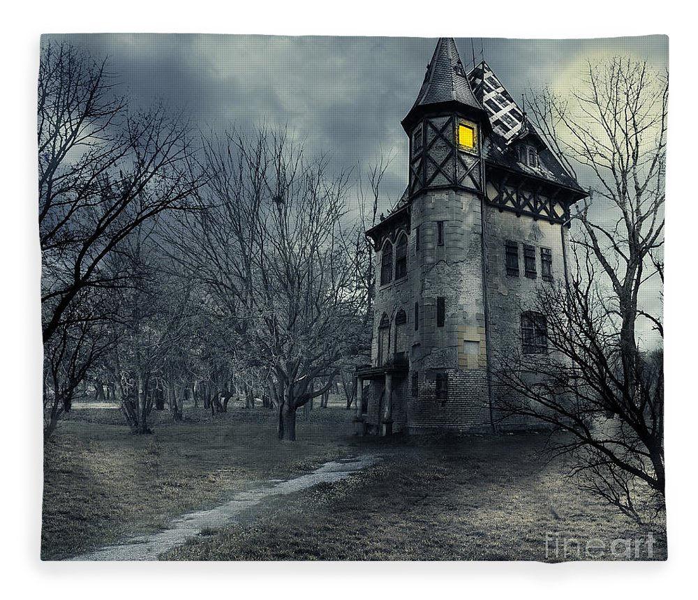 House Fleece Blanket featuring the photograph Haunted house by Jelena Jovanovic