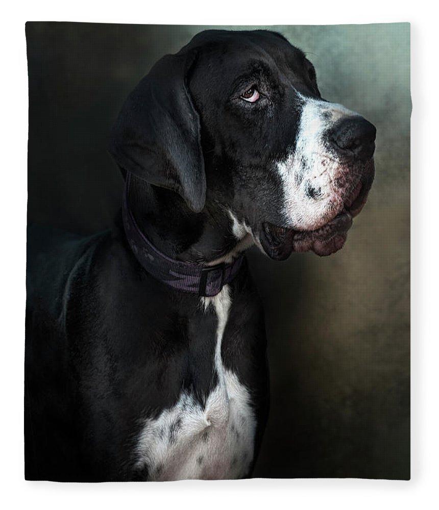 Pets Fleece Blanket featuring the photograph Helga by Silversaltphoto.j.senosiain