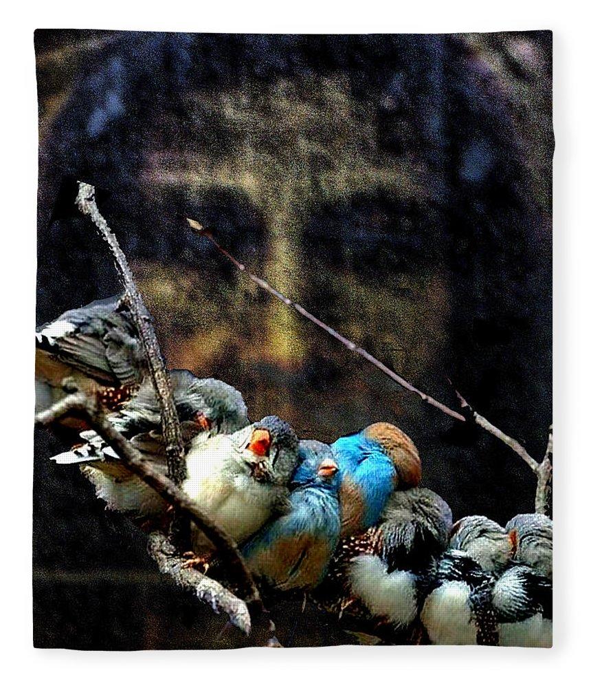 His Eye Is On The Sparrow Fleece Blanket featuring the digital art His Eye Is On The Sparrow by Seth Weaver