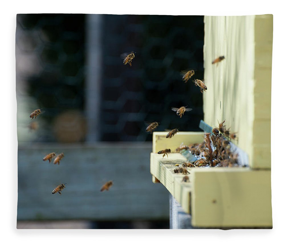 Animal Themes Fleece Blanket featuring the photograph Honey Bees Flying Around Hive Entrance by Monica Fecke