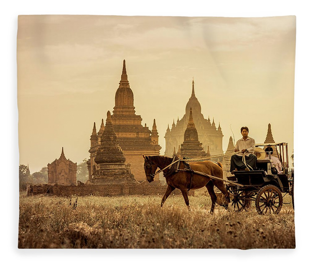 Horse Fleece Blanket featuring the photograph Horse And Carriage Turning By Temples by Merten Snijders