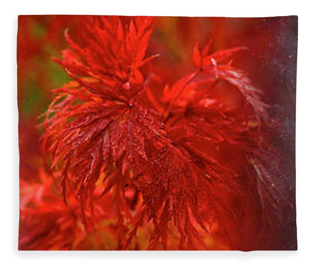 Photography Fleece Blanket featuring the photograph Hubble Galaxy With Red Maple Foliage by Panoramic Images