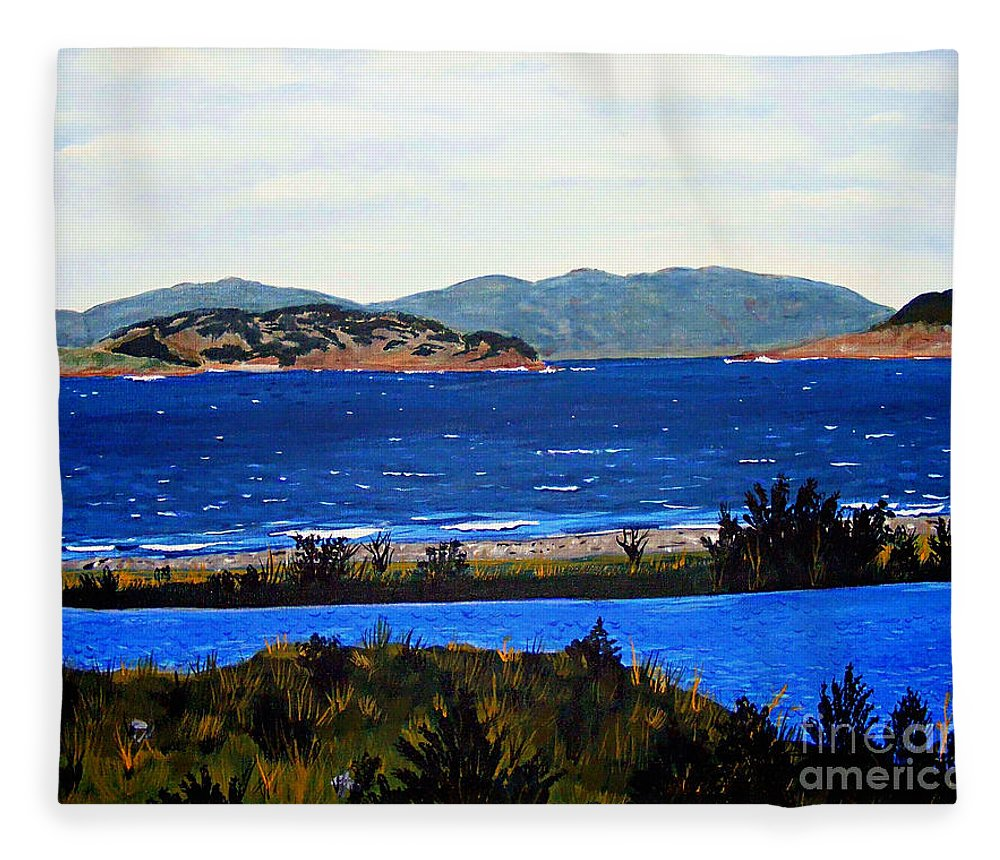 Islands Fleece Blanket featuring the painting Iona formerly Rams Islands by Barbara Griffin