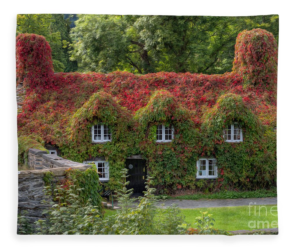 15th Century Fleece Blanket featuring the photograph Ivy Cottage by Adrian Evans