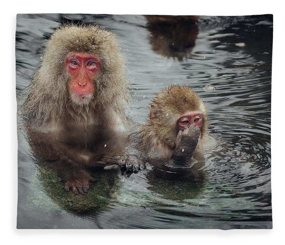 Animal Themes Fleece Blanket featuring the photograph Japanese Snow Monkeys Enjoying The Hot by Photography By Martin Irwin