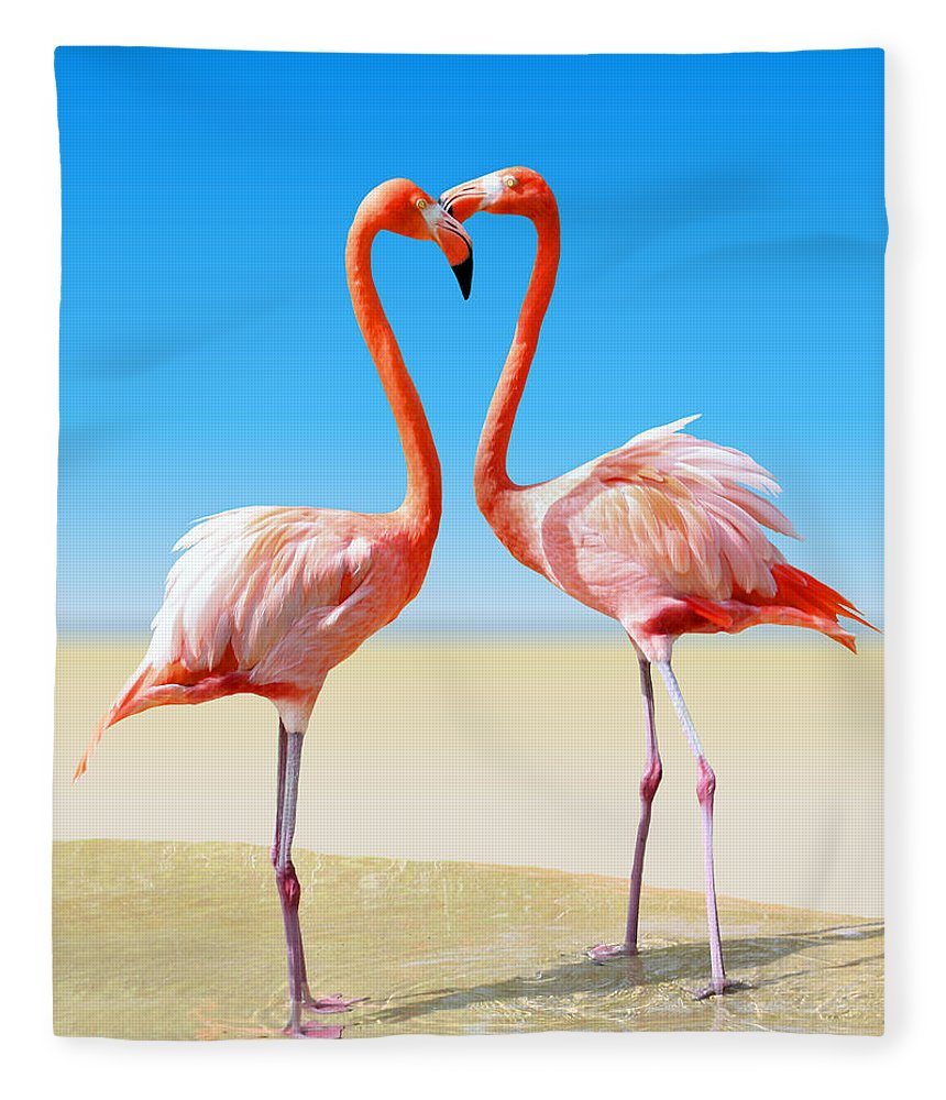 Flamingo Fleece Blanket featuring the photograph Just We Two by Kristin Elmquist