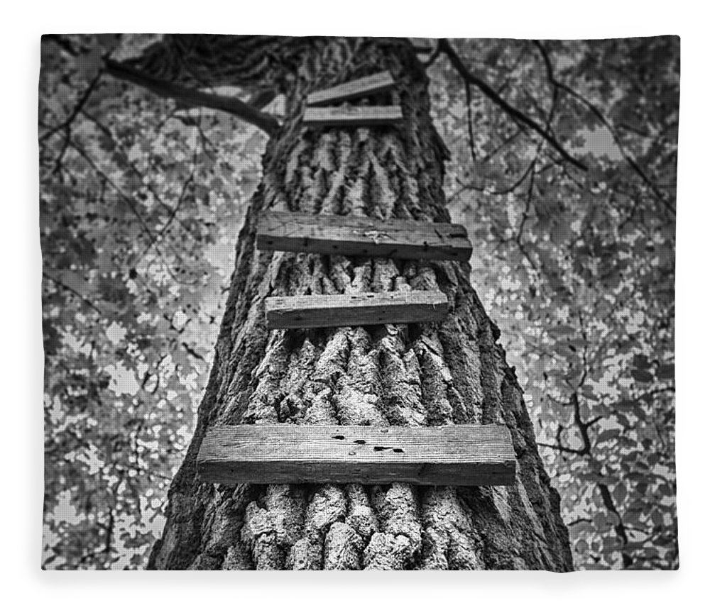 Tree Fleece Blanket featuring the photograph Ladder To The Treehouse by Scott Norris