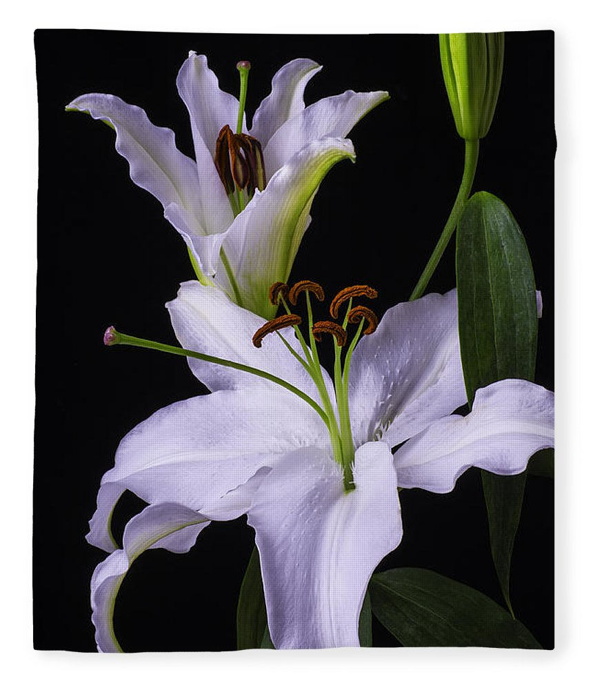 White Tiger Lily Fleece Blanket featuring the photograph Lily's In Bloom by Garry Gay