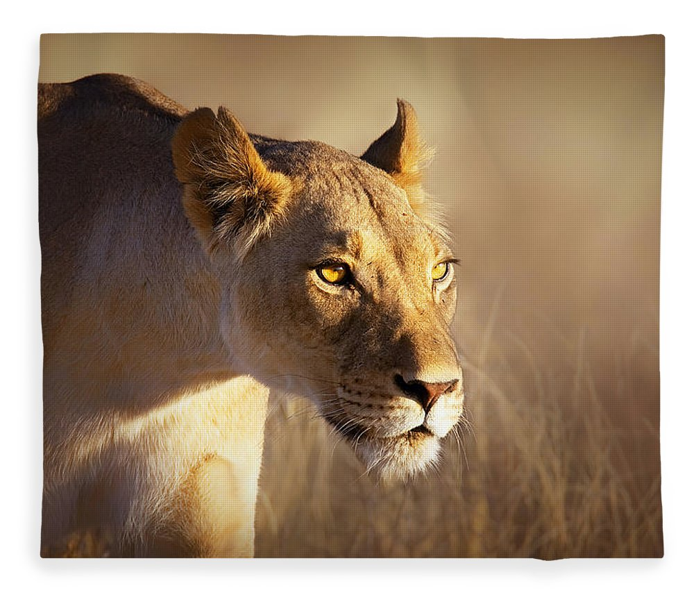 Lion Fleece Blanket featuring the photograph Lioness Portrait-1 by Johan Swanepoel