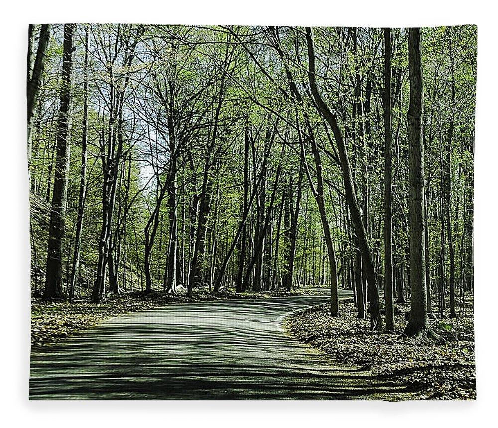 Usa Fleece Blanket featuring the photograph M119 Tunnel Of Trees Michigan by LeeAnn McLaneGoetz McLaneGoetzStudioLLCcom