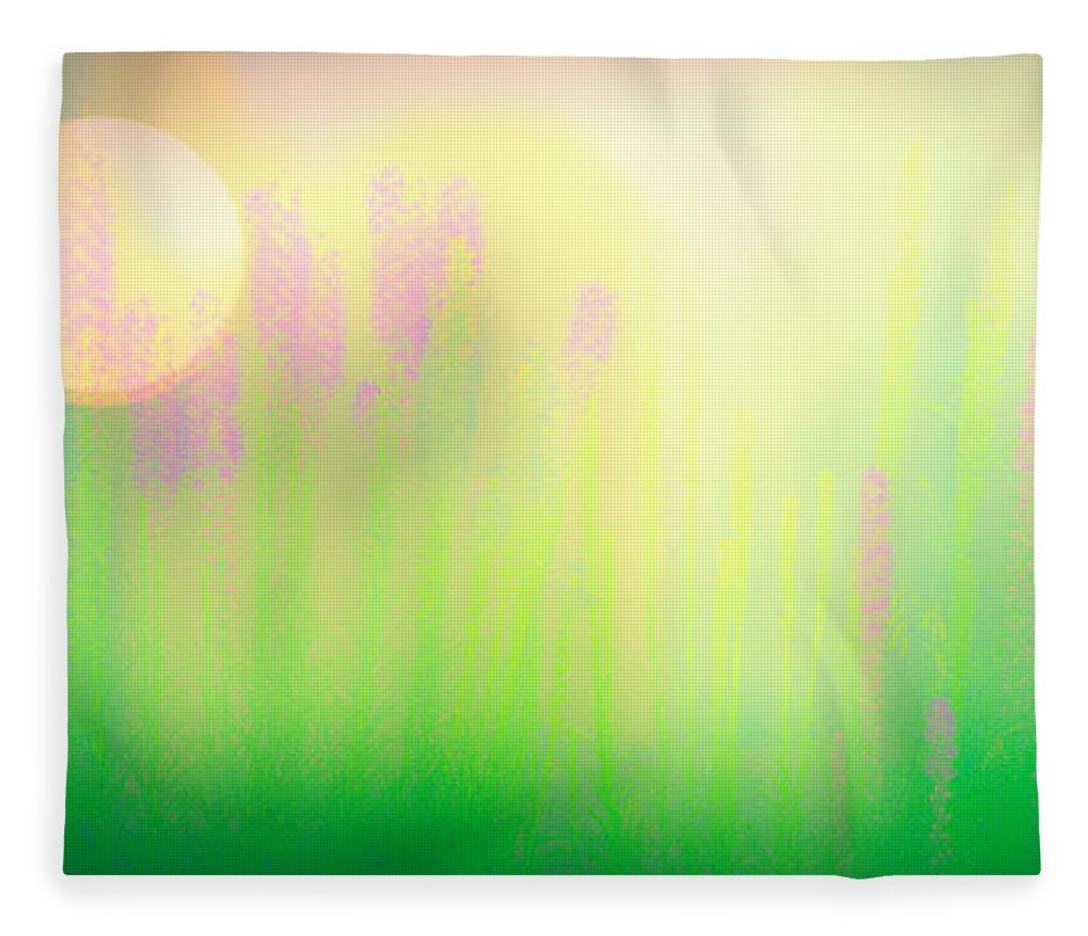 Flower Fleece Blanket featuring the photograph Mid Summer Morning by Bob Orsillo