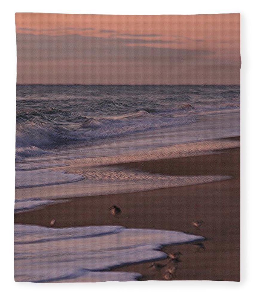 Beach Fleece Blanket featuring the photograph Morning Birds at the Beach by Nadine Rippelmeyer
