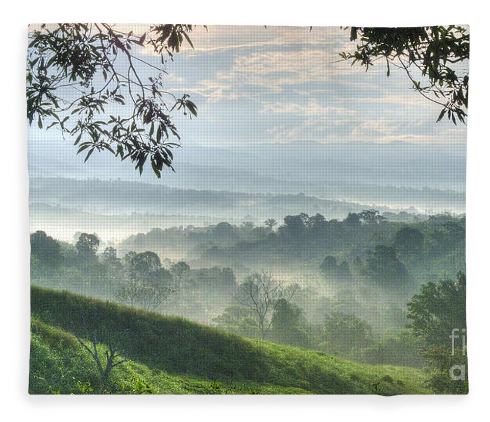 Landscape Fleece Blanket featuring the photograph Morning Mist by Heiko Koehrer-Wagner