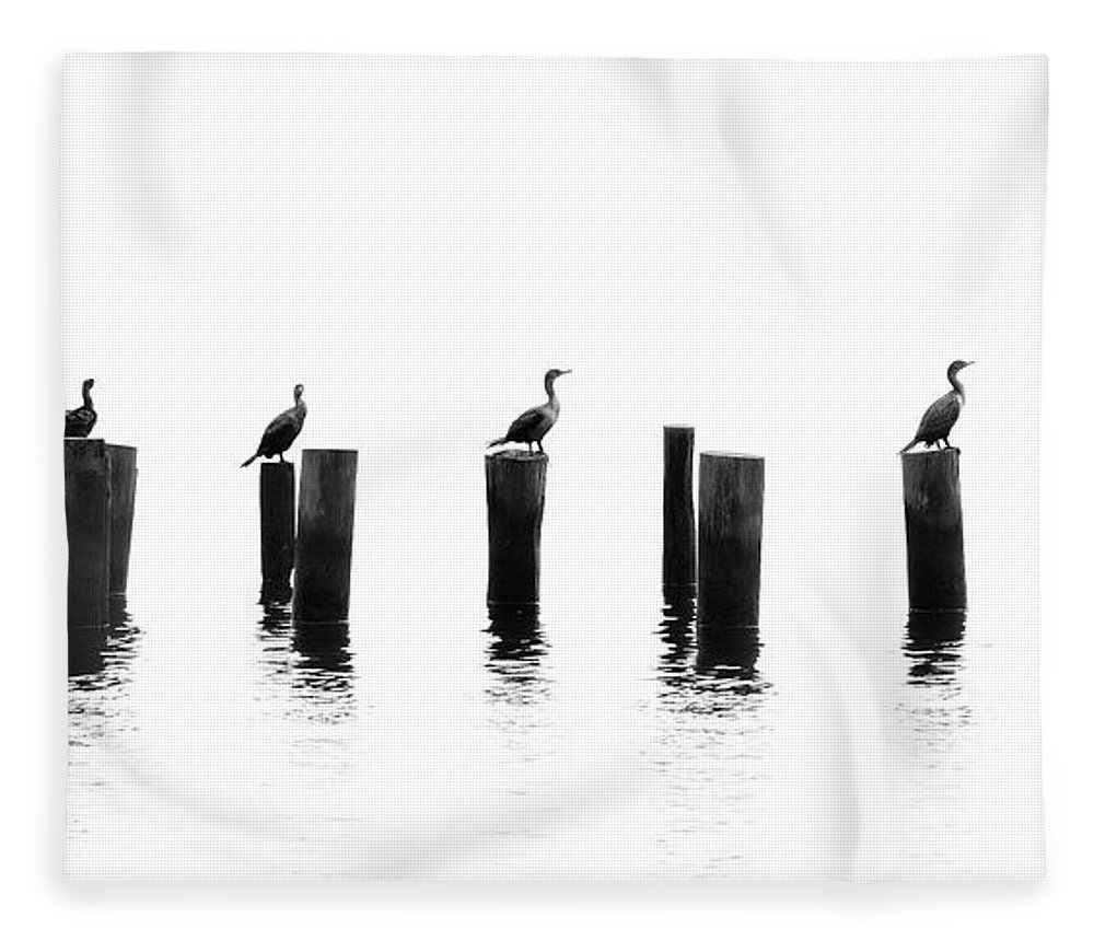 Panoramic Fleece Blanket featuring the photograph Morning Reflections by Chris Moore - Exploring Light Photography