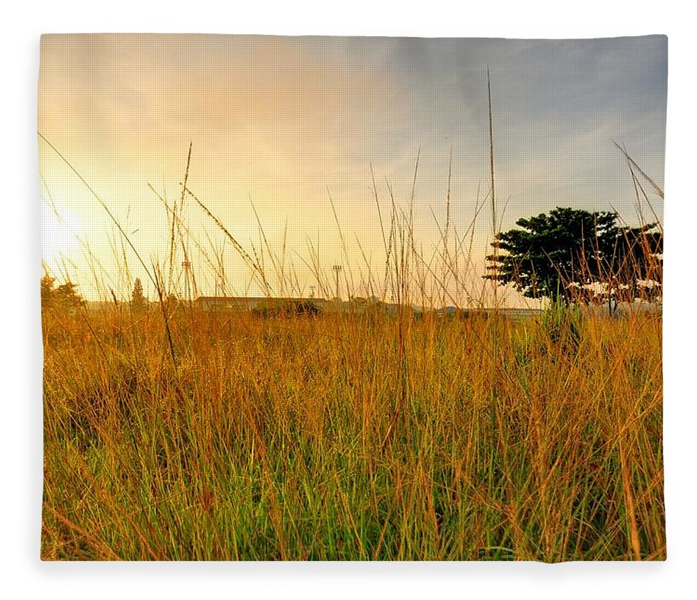 Scenics Fleece Blanket featuring the photograph Morning Sun Shining Through The Tree by Primeimages