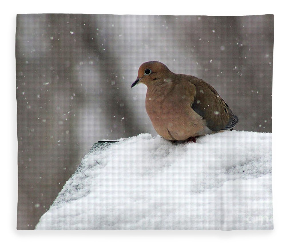 Mourning Dove Fleece Blanket featuring the photograph Mourning Dove In Snow by Karen Adams