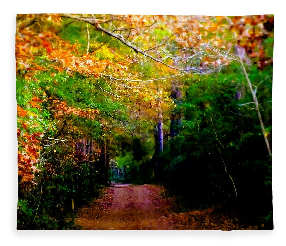 Paths Fleece Blanket featuring the photograph Paths We Choose by Karen Wiles