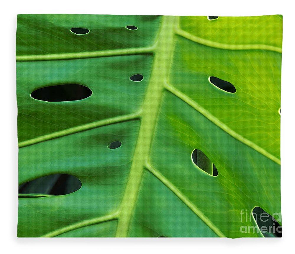 Leaf Fleece Blanket featuring the photograph Peekaboo Leaf by Ann Horn